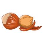 hazelnut-icon-cartoon-style-vector-21188048